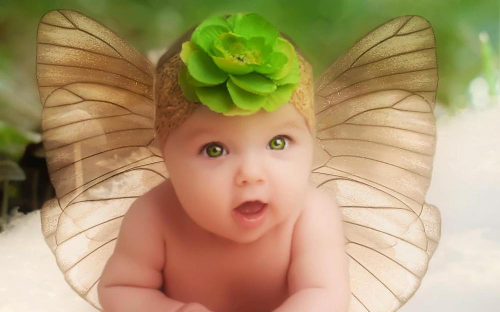 Butterflyinsnow.jpg